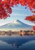 Mt Fuji - Back Cover