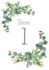 Term Title Page - Eucalyptus