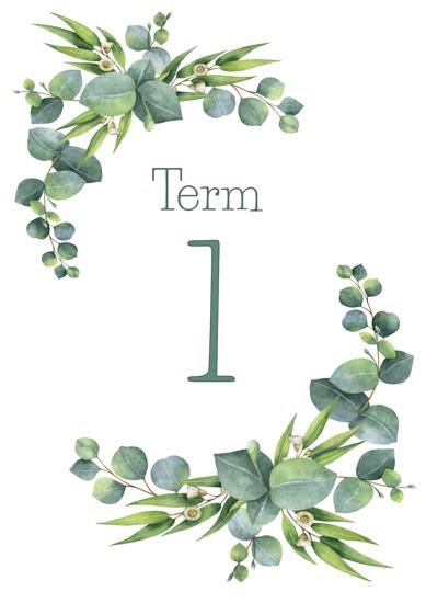 Eucalyptus - Term 1