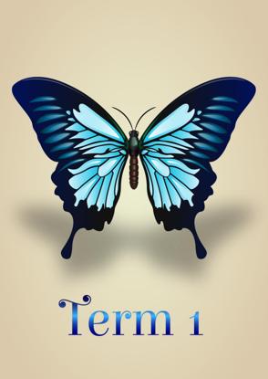 Artistic Butterflies - Term 1